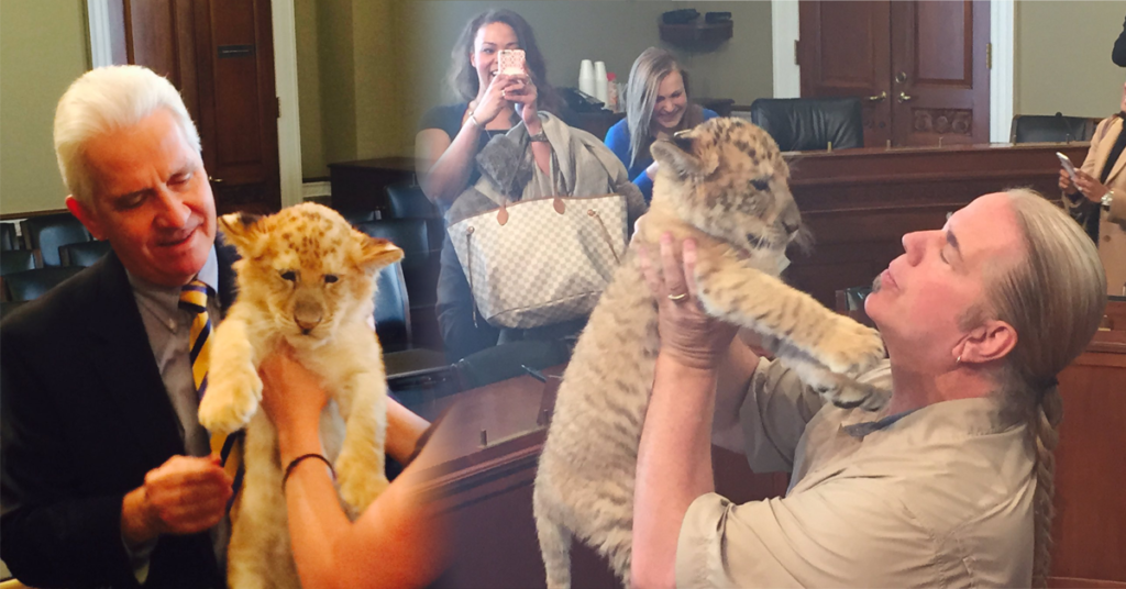 Cardi B Wants to Start a GoFundMe for Tiger King's Joe Exotic